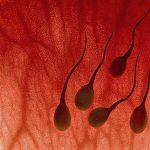 Điều trị bệnh xuất tinh ra máu như thế nào?